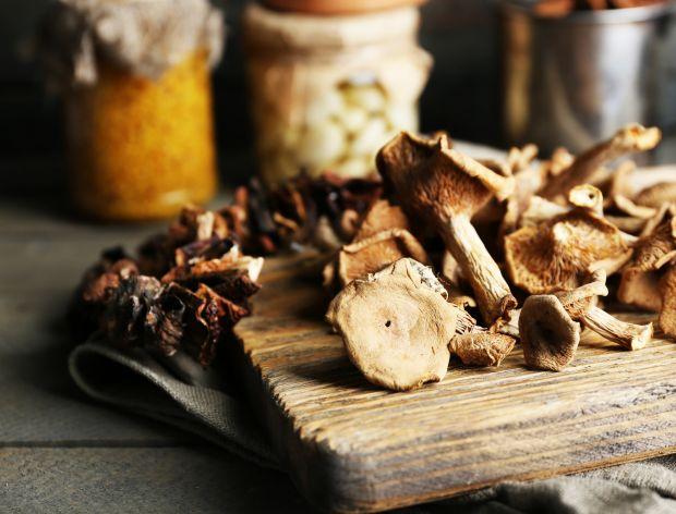 Jak wybrać suszarkę do grzybów?