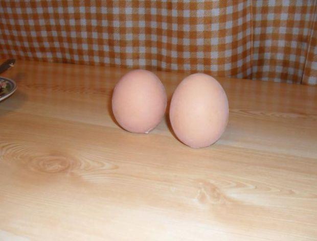 Uciekające jajka