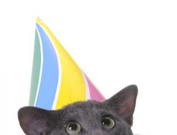 W dniu urodzin dużo zdrowia, wiele szczęścia