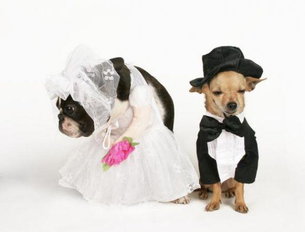W Kościele podczas ślubu