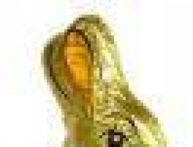 Wielkanoc w Złotych Tarasach