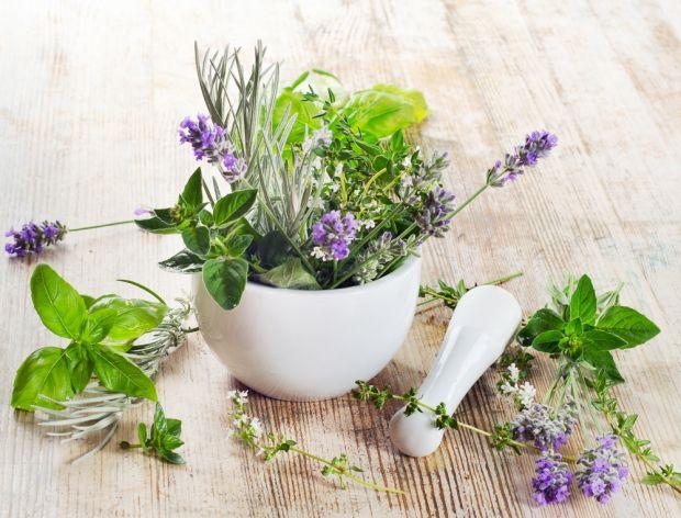 Właściwości kuchennych ziół i przypraw