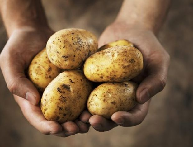 Ziemniak lekarstwem na kryzys w Hiszpanii?