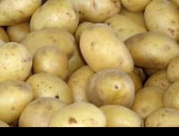 Ziemniaki w mundurkach.