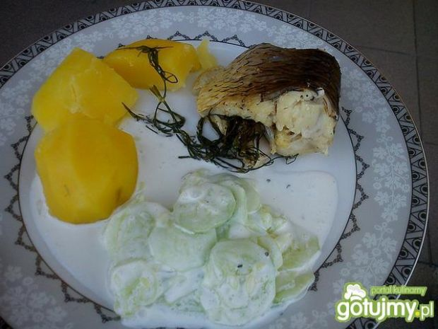 Amur z grilla