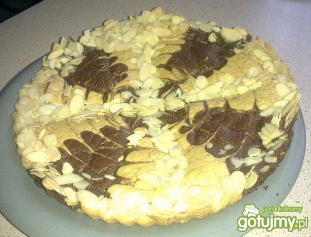 Ciacho budyniowo - kakaowe