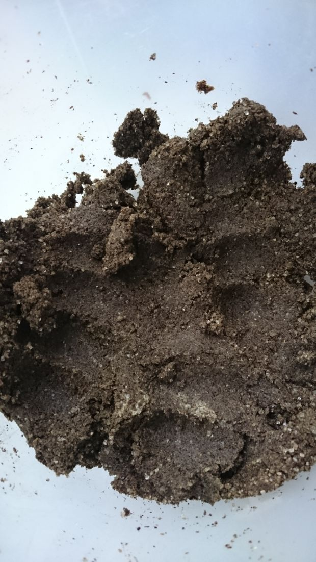 Ciastka konopne z wierzchem konopno-pistacjowym