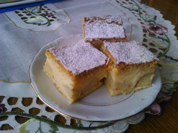 Ciasto jabłkowo budyniowe