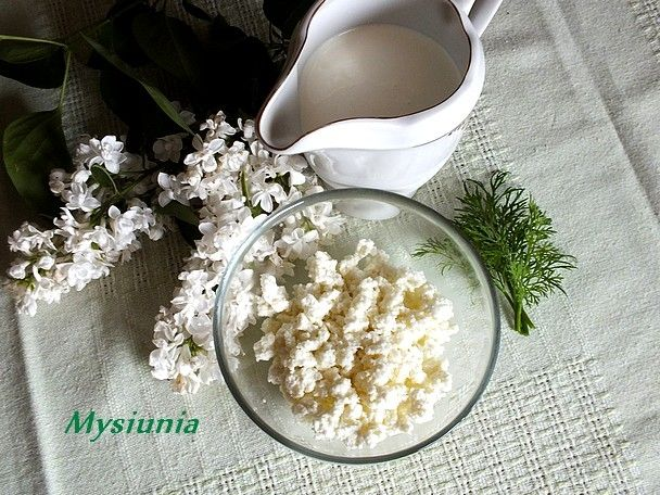 Domowy cottage cheese