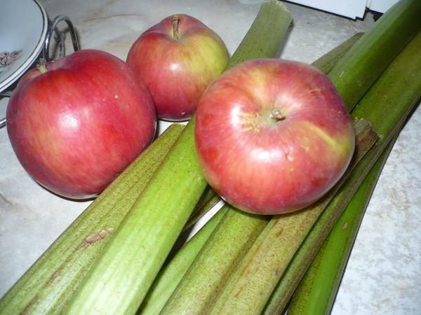 Dżem rabarbarowo-jabłkowy