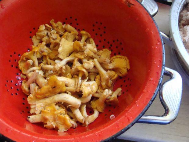 Gołąbki z kaszą i sosem kurkowym