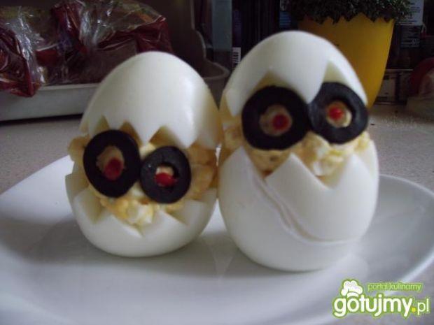 Jajeczne kurczaki