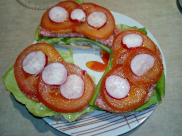 Kanapki z salami i nowalijkami