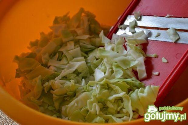 Kapuśniak z mięsem mielonym i ryżem
