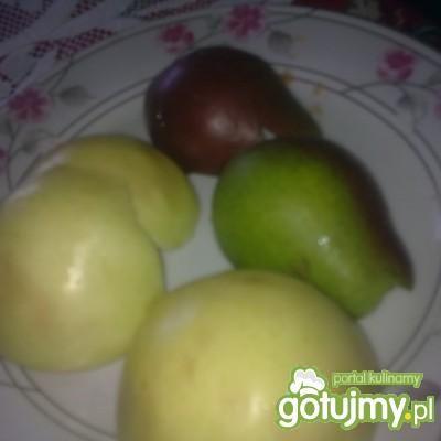 Koktajl jabłkowo-gruszkowy