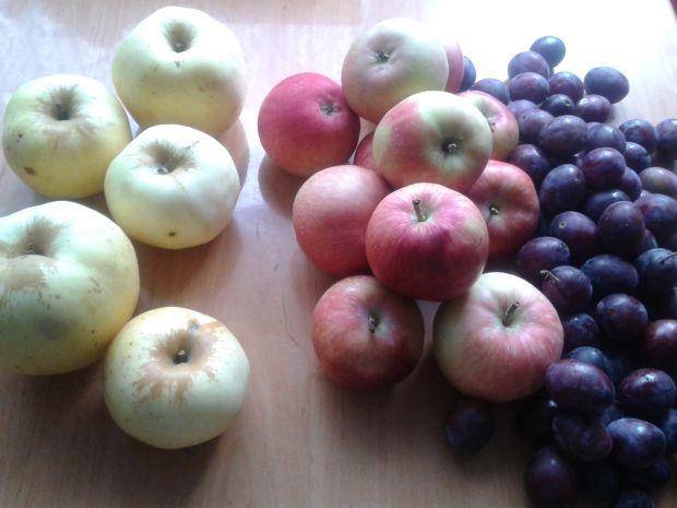 Kompoty z owoców mieszanych