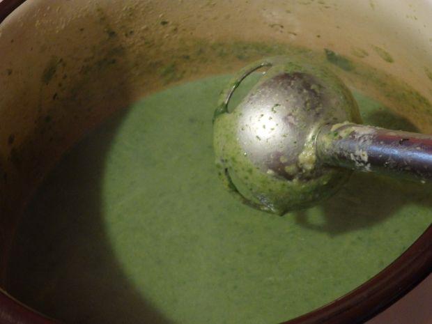 Krem brokułowo-szpinakowy