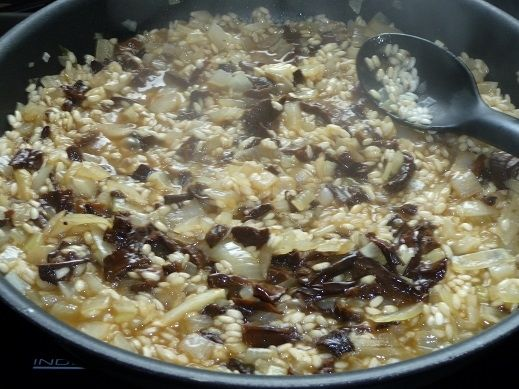 Kremowe risotto z suszonymi grzybami leśnymi