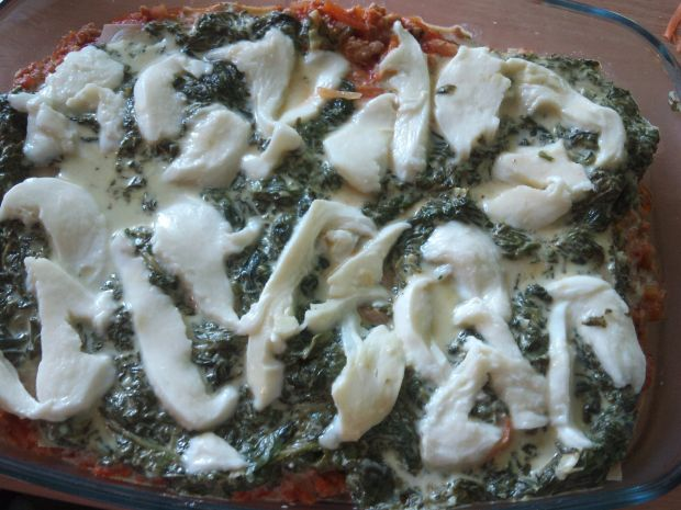 Lasagne z dwoma sosami