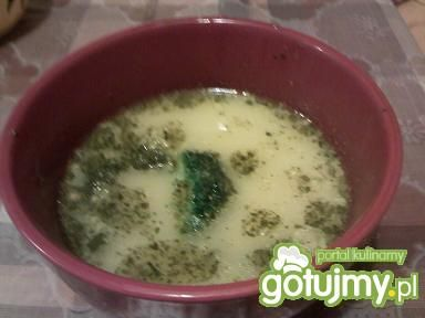 lekka kremowa zupa brokułowa