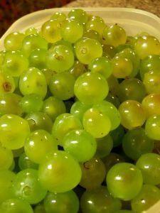 Likier winogronowy