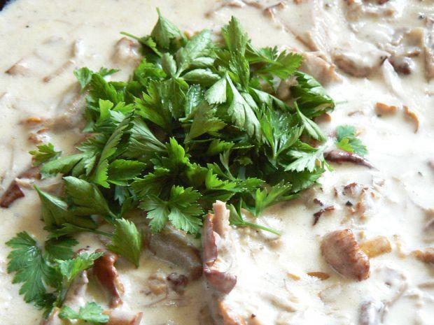 Makaron z indykiem i sosem kurkowym