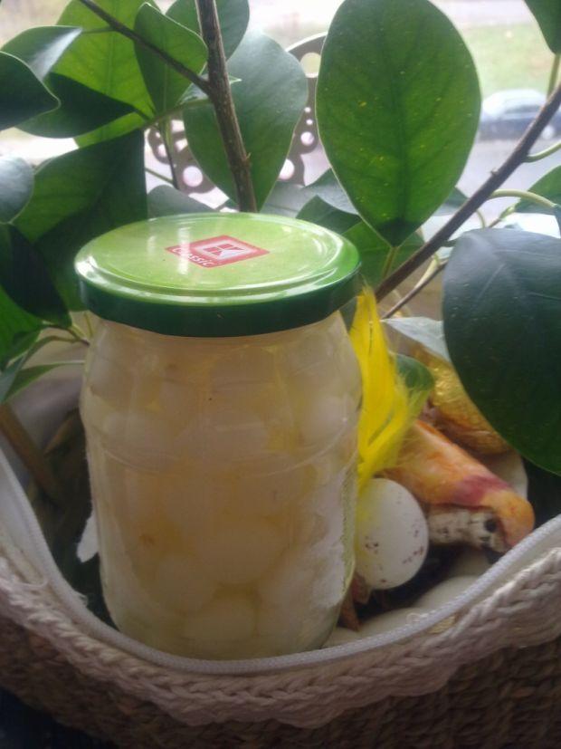 Marynowane cebule na zimę