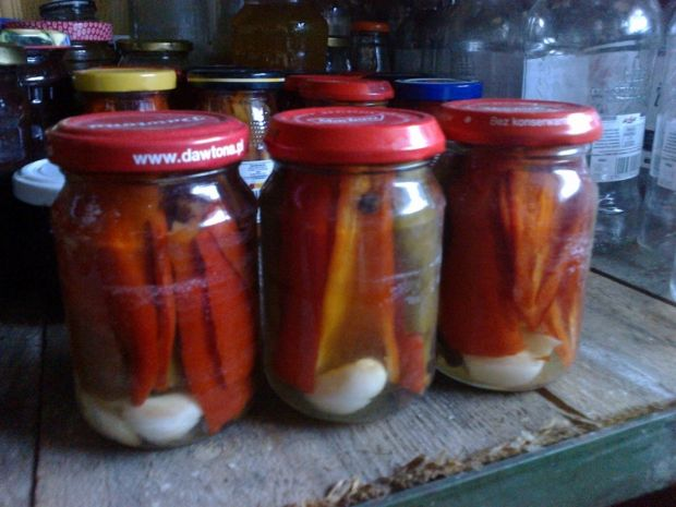 Marynowane papryczki chilli z czosnkiem