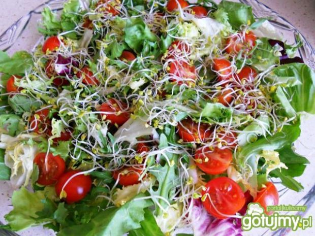 Mix sałat z pomidorkami i kiełkami