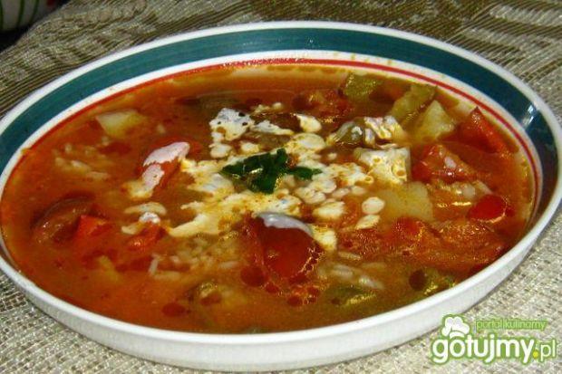 Paprykowa z ryżem i śmietaną