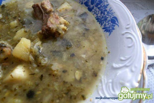 Parzybroda- śląska zupa