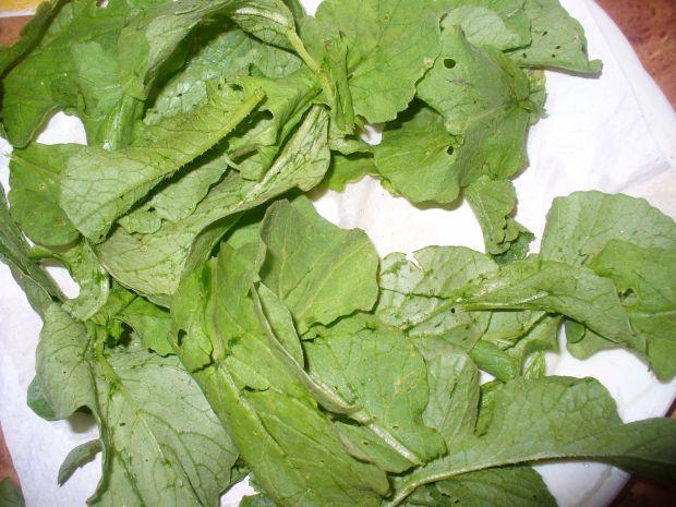 Pesto z listków rzodkiewki