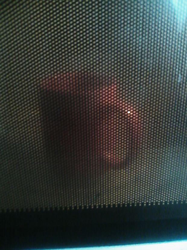 Piernikowa babeczka z kubeczka