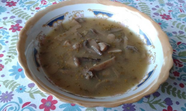 Pikantna zupa z boczniaków