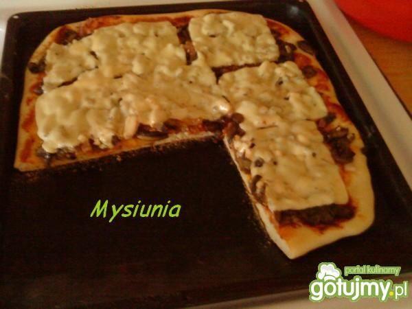 pizza z serem w plasterkach