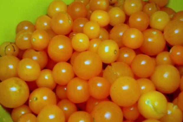 Pomarańczowa galaretka z pomidorów