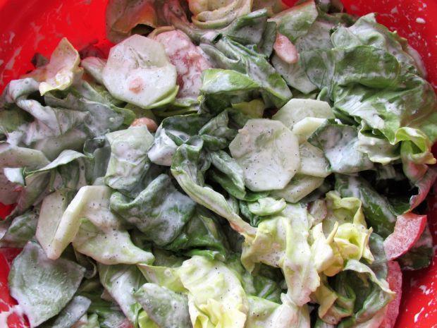 Pyszna sałatk obiadowa z sałat, ogórka i pomidora