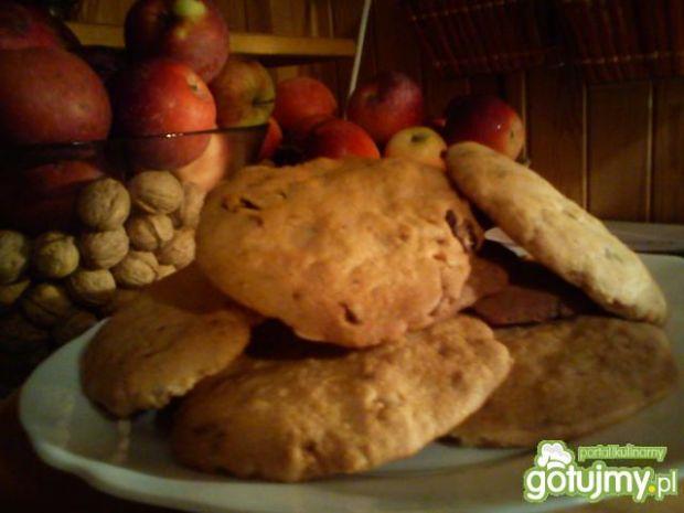 Pyszne ciasteczka owsiane z żurawiną