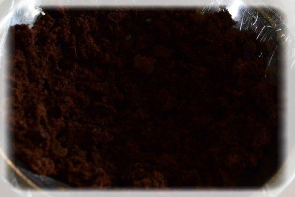 Rabarbarowy kopiec kreta