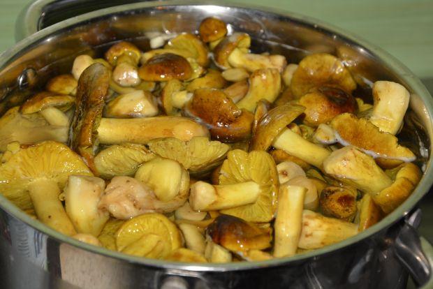 Rosół drobiowy z gąskami i karmelizowaną cebulą