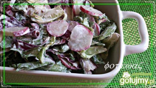 Sałata z rzodkiewką, cebulą i rzeżuchą