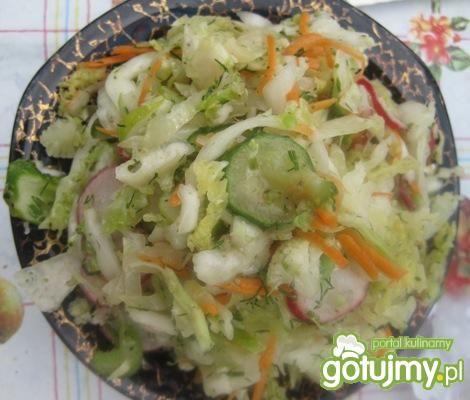 Sałatka letnia warzywna