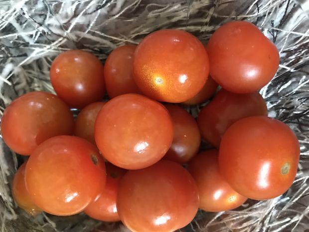 Sałatka z pomidorkami, słonecznikiem i jajkiem