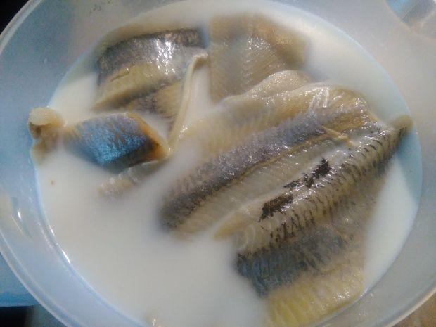 Śledź w oleju z cebulą i żurawiną