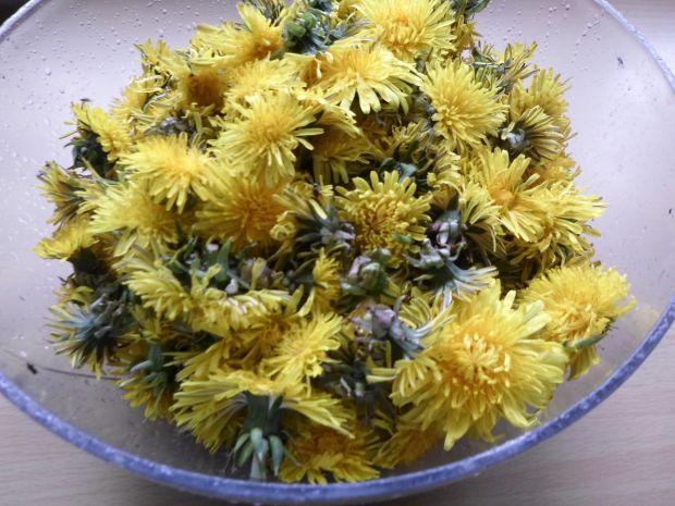 Sok z kwiatów mniszka