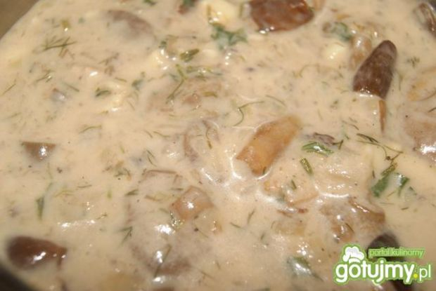 Sos ze świeżych grzybów wg Buni