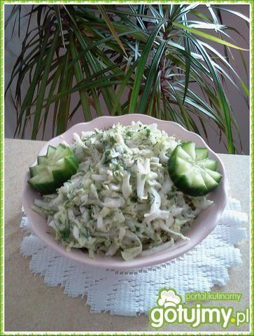 Sur. zielono-biała z pekinki i koperku