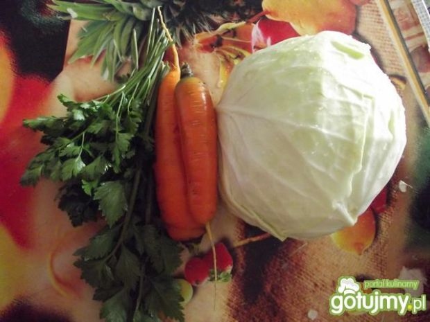 Surówka z kapusty i marchewki wg Natki