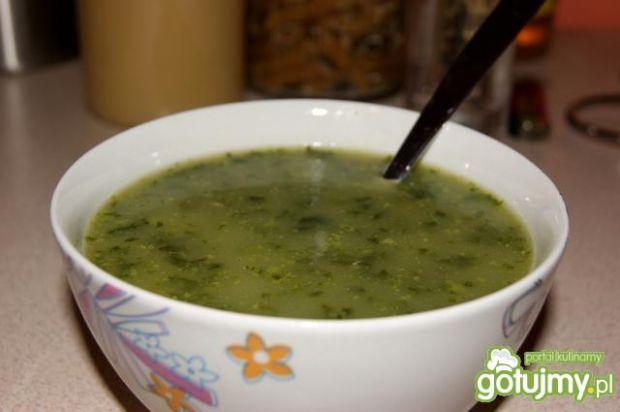 Szpinakowa (receptura Agusi)