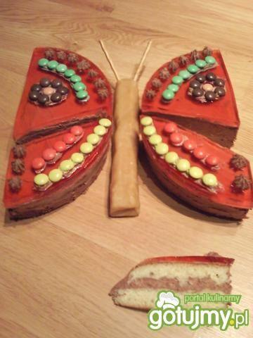 Tort Motylek Iwusi